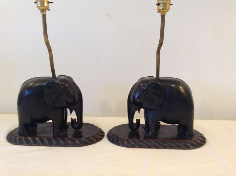 Pair Indian elephants